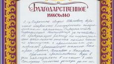 Отзыв Стрыгина